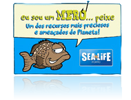 SEALIFE - Mero o Peixe - multimédia